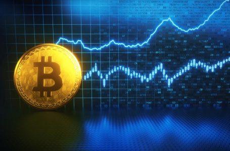 Wieloryby nadal kupują Bitcoiny mimo wzrostu ceny